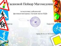 Диплом Гасановой