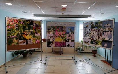 Персональная фотовыставка в Детско-юношеском центре Кучеренко Юлии, обучающейся в объединении «Увлекательный фотошоп»